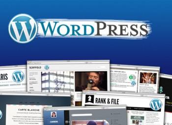 collageWordpress